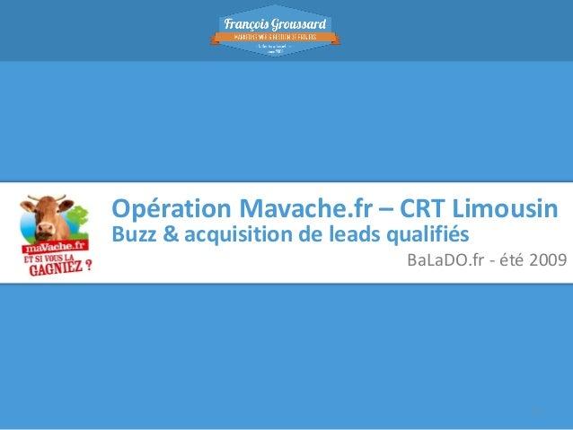 Opération Mavache.fr – CRT Limousin Buzz & acquisition de leads qualifiés  BaLaDO.fr - été 2009  1