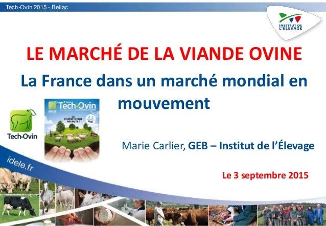 Tech-Ovin 2015 - Bellac LE MARCHÉ DE LA VIANDE OVINE La France dans un marché mondial en mouvement Marie Carlier, GEB – In...