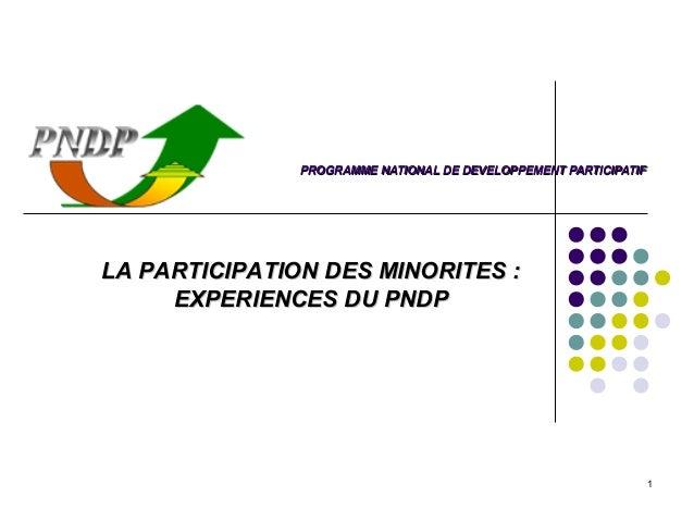 PROGRAMME NATIONAL DE DEVELOPPEMENT PARTICIPATIFLA PARTICIPATION DES MINORITES :     EXPERIENCES DU PNDP                  ...