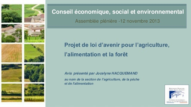 Conseil économique, social et environnemental Assemblée plénière -12 novembre 2013  Projet de loi d'avenir pour l'agricult...