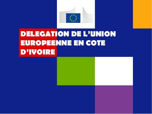 DELEGATION DE L'UNION EUROPEENNE EN COTE D'IVOIRE