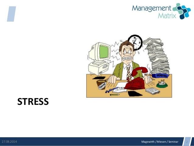 Magewirth / Miesen / Seminar STRESS 27.08.2014 2