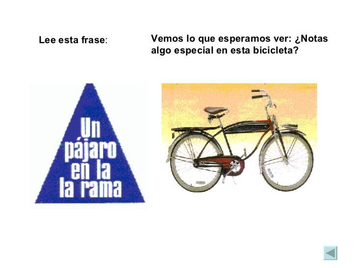 Lee esta frase : Vemos lo que esperamos ver: ¿Notas algo especial en esta bicicleta?