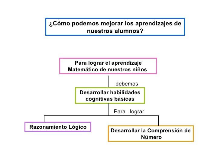 Prueba censal aprendizajes rosa cuba presentación1