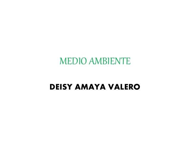 MEDIO AMBIENTE DEISY AMAYA VALERO