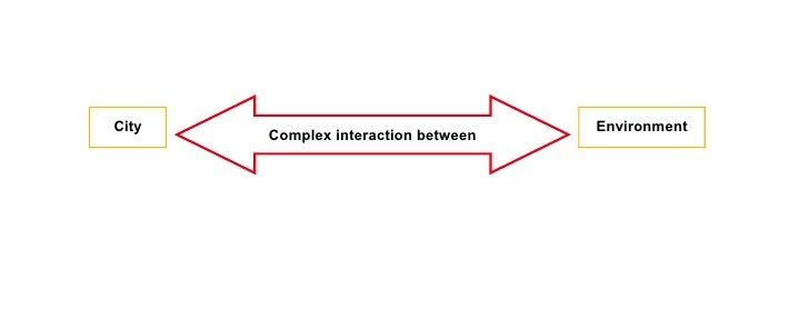 City                                 Environment        Complex interaction between