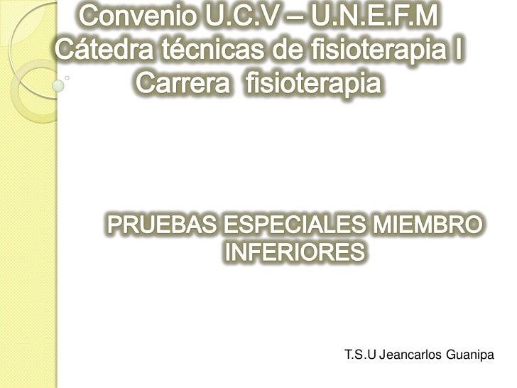 Convenio U.C.V – U.N.E.F.MCátedra técnicas de fisioterapia I Carrera  fisioterapia <br />PRUEBAS ESPECIALES MIEMBRO INFERI...