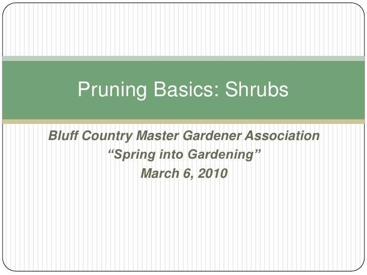 "Bluff Country Master Gardener Association<br />""Spring into Gardening"" <br />March 6, 2010 <br />Pruning Basics: Shrubs<br />"