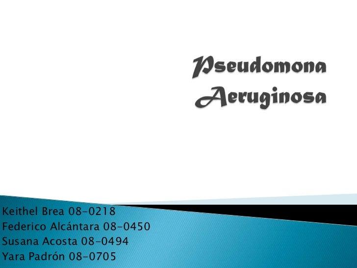 PseudomonaAeruginosa<br />KeithelBrea 08-0218<br />Federico Alcántara 08-0450<br />Susana Acosta 08-0494<br />YaraPadrón 0...