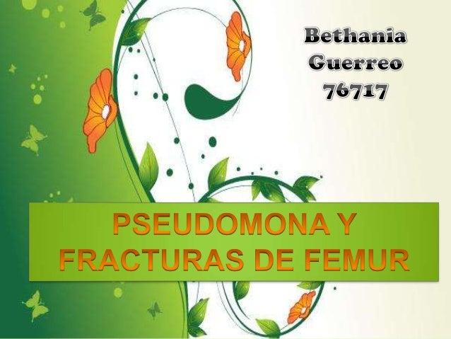 Pseudomonas es un género de bacilos rectos o ligeramente curvados, gram negativos. Su nombre, significa «falsa unidad», de...