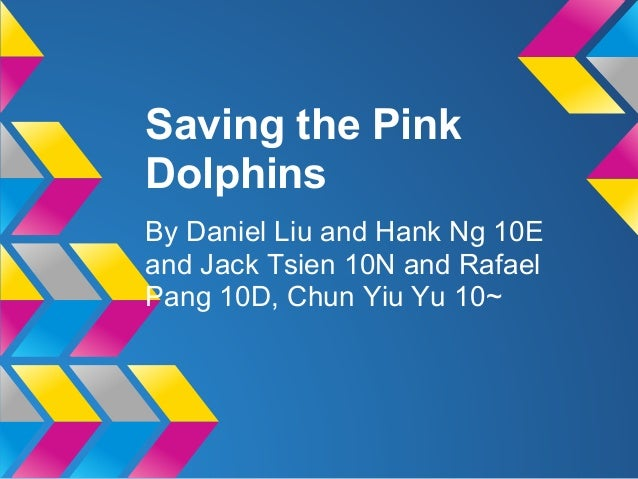Saving the PinkDolphinsBy Daniel Liu and Hank Ng 10Eand Jack Tsien 10N and RafaelPang 10D, Chun Yiu Yu 10~