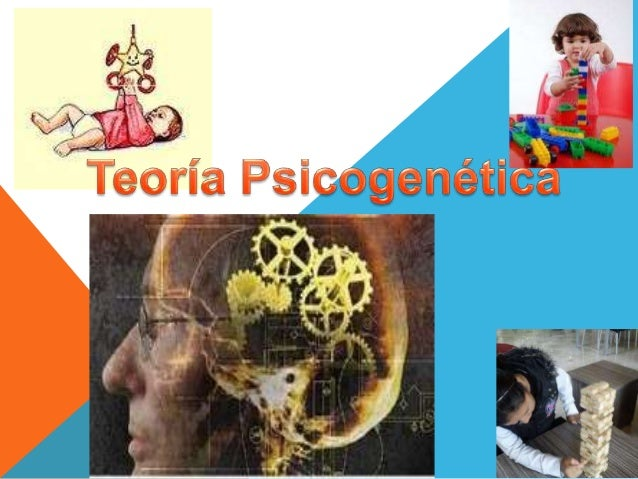 teoria psicogenetica y alfabetizacion