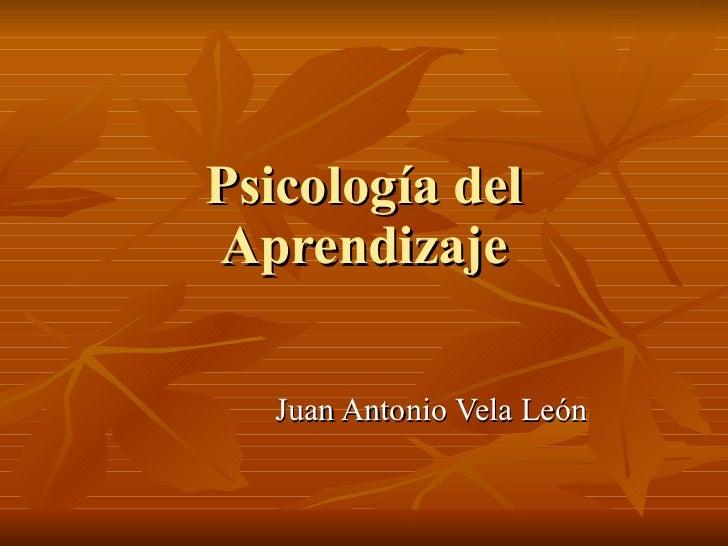 Psicología del Aprendizaje Juan Antonio Vela León