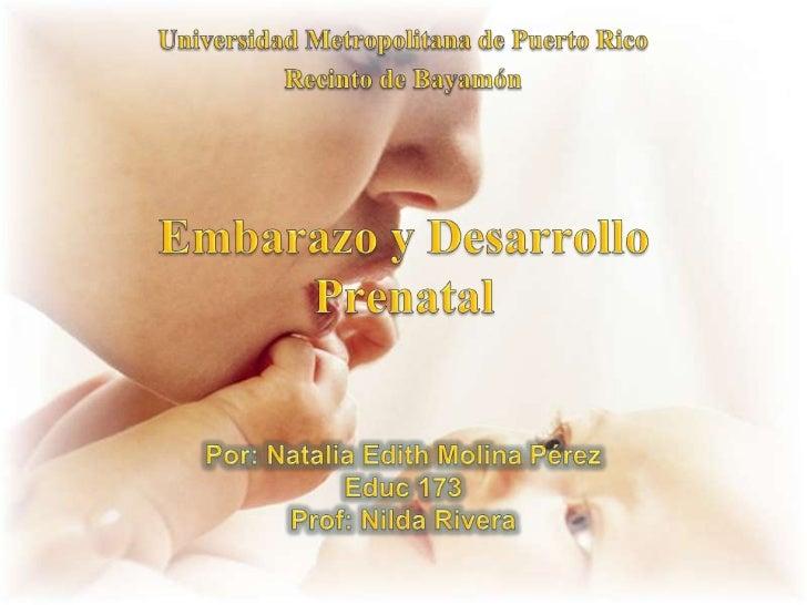 Universidad Metropolitana de Puerto Rico<br />Recinto de Bayamón<br />Embarazo y Desarrollo Prenatal<br />Por: Natalia Edi...