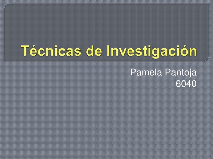 Técnicas de Investigación<br />Pamela Pantoja <br />6040 <br />