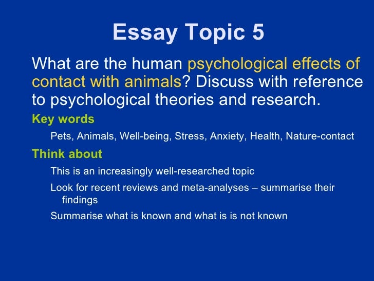 odyssey of life reflective essay Wind power advantages and disadvantages essays uas bangalore library thesis dissertations life reflective of odyssey essays research paper on antifungal activity of.