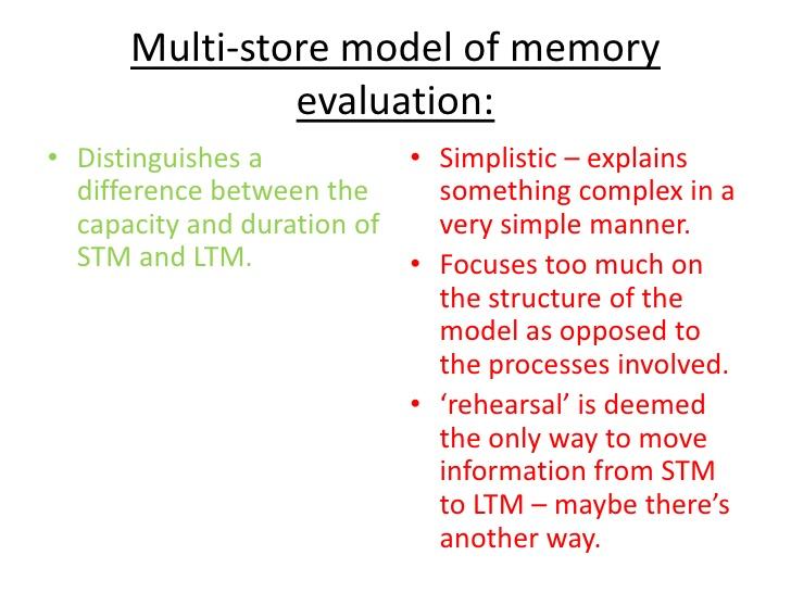 psychology essays on memory