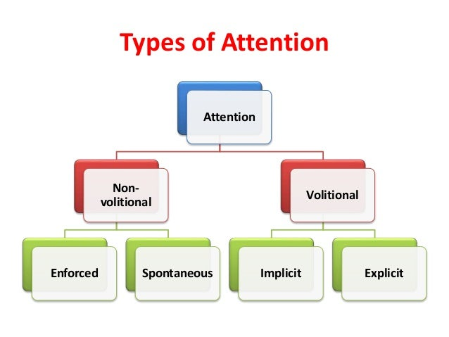 sensation attention in psychology Check out our top free essays on psychology sensation perception and attention paper to help you write your own essay.