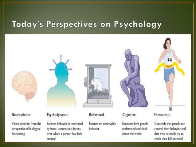 phychology in perspective There are a number of different perspectives in social psychology and each has a different approach to explaining social behavior.