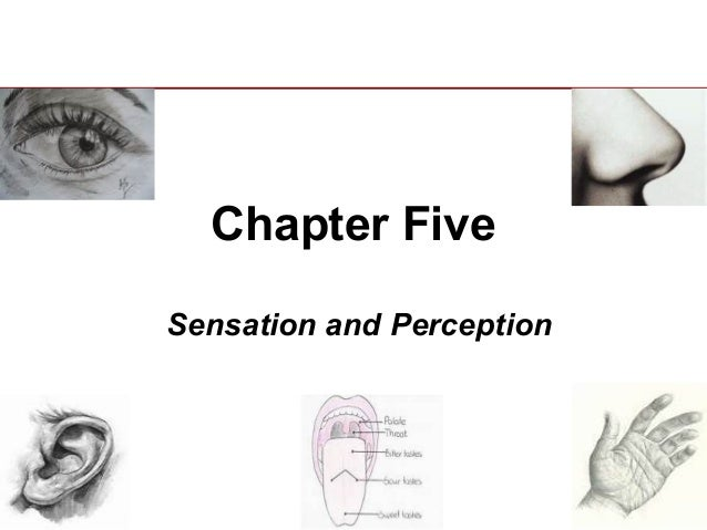 Psyc 2301 chapter five powerpoint 1(1)(1)