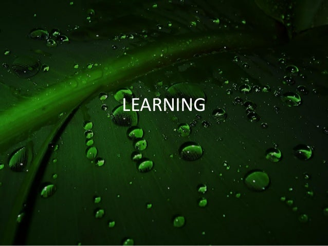 Psych learning