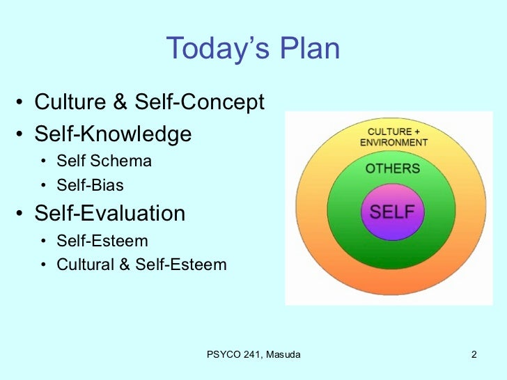 self concept self awareness and self schemas In my assessment i shall include aspects that influenced the brothers self concept factors that influence person self concept sociology essay self -image.