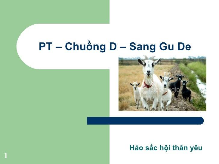 Pt – Chuồng D – Sang Gu De nhà mình ^^