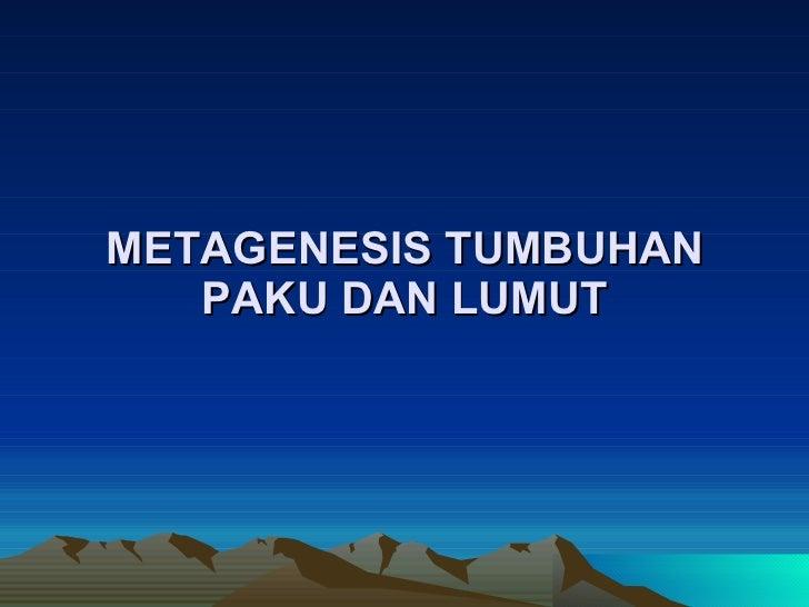 Pteridophyta Metagenesis