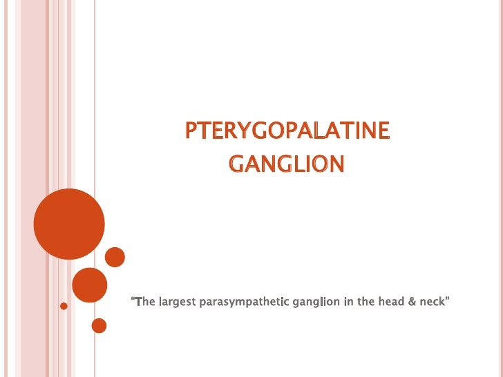 "pterygopalatineganglion<br />""The largest parasympathetic ganglion in the head & neck""<br />"