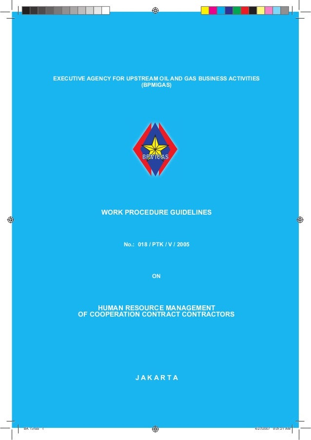 GUIDELINES  EXECUTIVE AGENCY FOR UPSTREAM OIL AND GAS BUSINESS ACTIVITIES (BPMIGAS)  WORK PROCEDURE GUIDELINES  No.: 018 /...