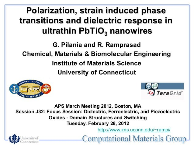 Polarization, strain induced phase transitions and dielectric response in ultrathin PbTiO3 nanowires