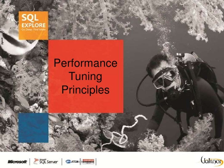 Performance  Tuning Principles