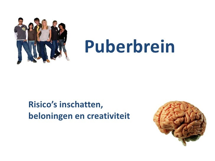 PuberbreinRisico's inschatten,beloningen en creativiteit