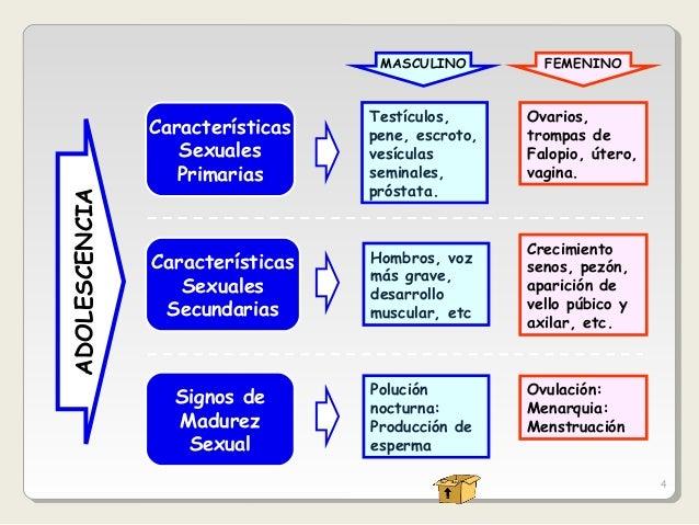 ... CARACTERÍSTICAS FÍSICAS, PRIMARIAS Y SECUNDARIAS DE LA ADOLESCENCIA