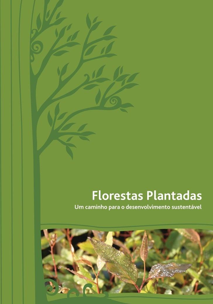 Reflexões sobre a silvicultura               A Associação Mineira de Silvicultura (AMS) é uma entidade               que co...