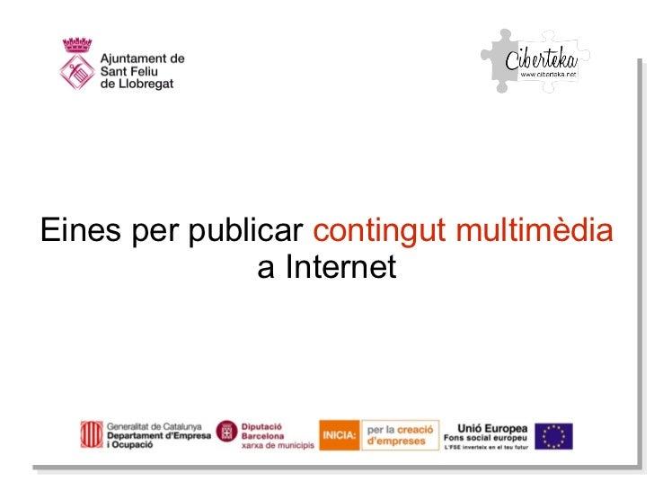 Publicacio multimedia
