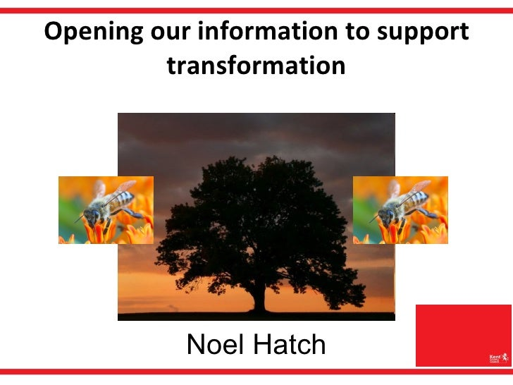 Opening information to transform services
