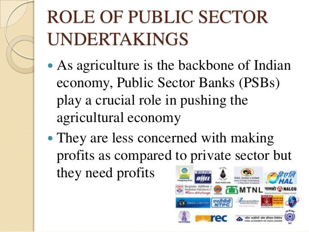 role of public sector and private sector economics essay To understand the role of the public sector, we must have an idea about its size in the context of the indian economy for a comprehensive view of the entire public sector, we should cover besides autonomous corporations, the departmental enterprises.