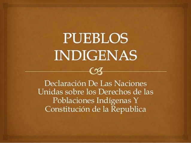 Declaración De Las Naciones Unidas sobre los Derechos de las Poblaciones Indígenas Y Constitución de la Republica