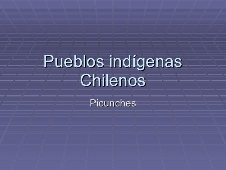 Pueblos indígenas Chilenos Picunches