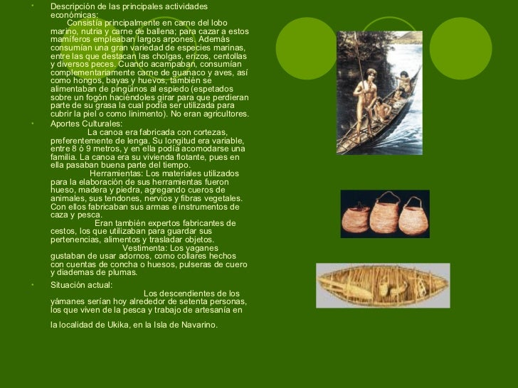 El ungüento para el tratamiento del hongo de las planta