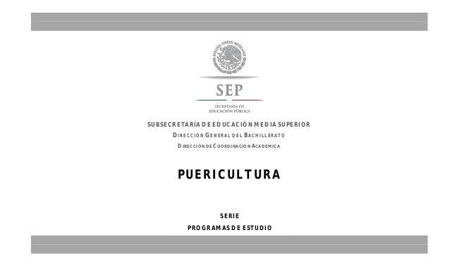 PUERICULTURA SUBSECRETARÍA DE EDUCACIÓN MEDIA SUPERIOR DIRECCIÓN GENERAL DEL BACHILLERATO DIRECCIÓN DE COORDINACIÓN ACADÉM...