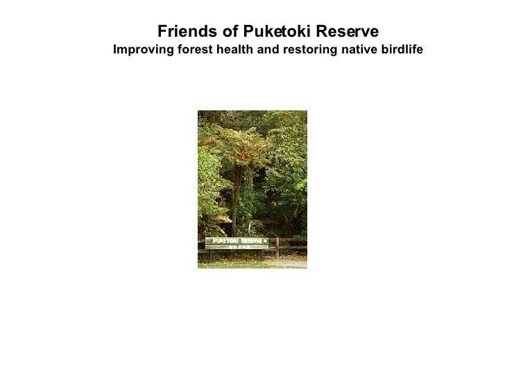 Puketoki Compressed3