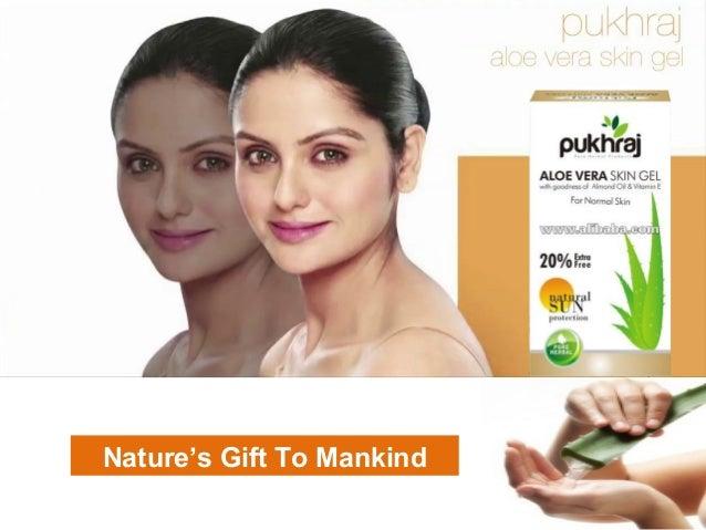 Pukhraj Aloe Vera Skin Gel Presentation-by Dipankar Dey