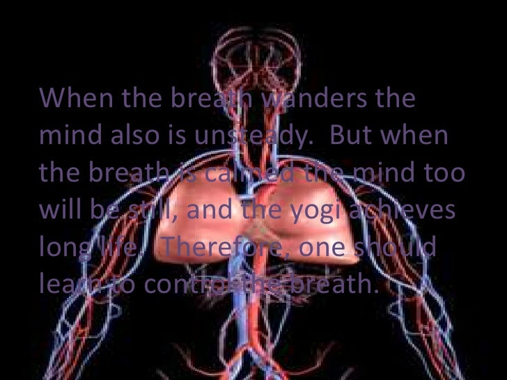 When the breath wanders the mind also is unsteady.  But when the breath is calmed the mind too will be still, and the yogi...