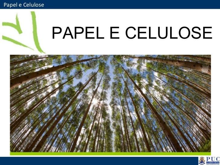 Papel e Celulose PAPEL E CELULOSE