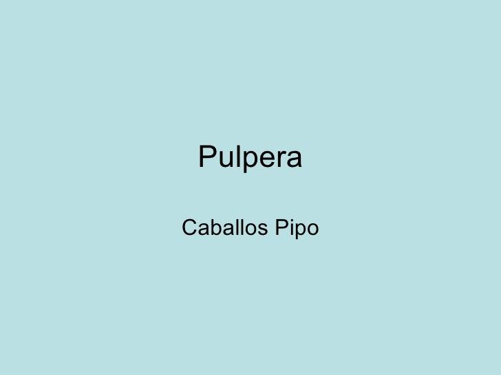 Pulpera Caballos Pipo