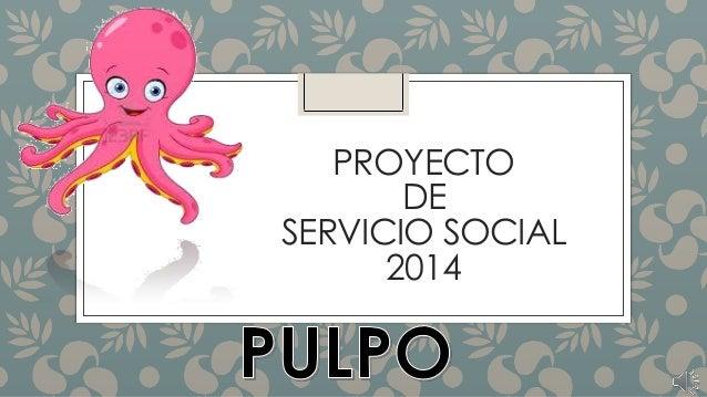PROYECTO DE SERVICIO SOCIAL 2014