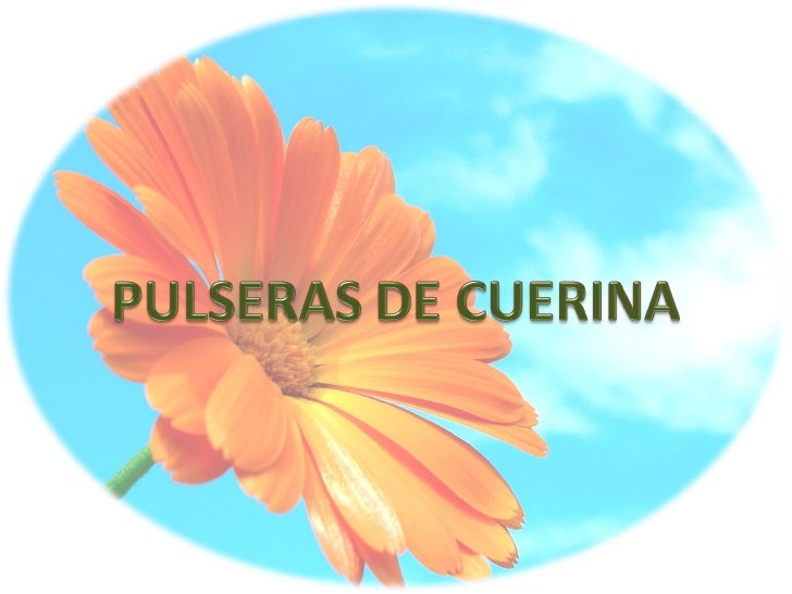 Pulseras De Cuerina