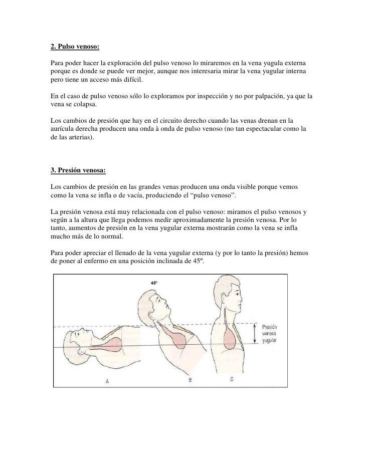 2. Pulso venoso:<br />Para poder hacer la exploración del pulso venoso lo miraremos en la vena yugula externa porque es do...